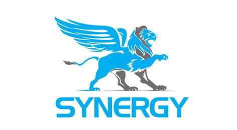 Synergy_brand_identity